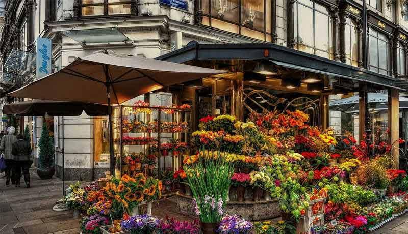 создаем цветочный магазин
