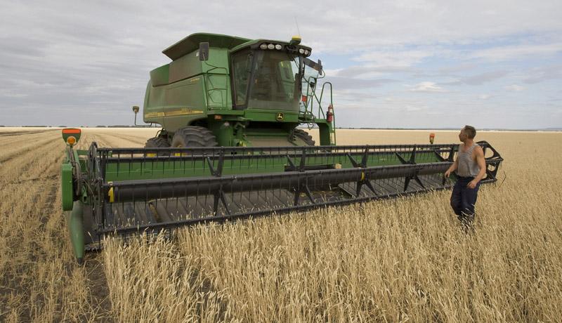 Для фермеров – бизнес-план крестьянского фермерского хозяйства