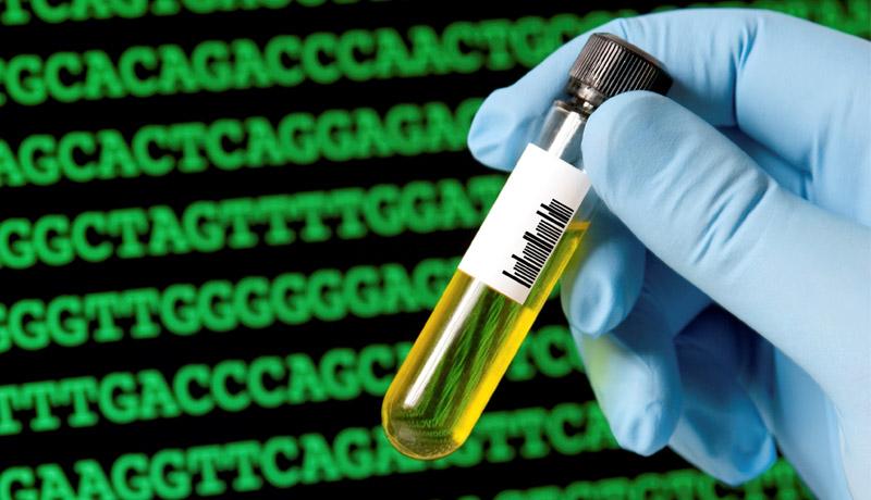 франшиза_Genetictest