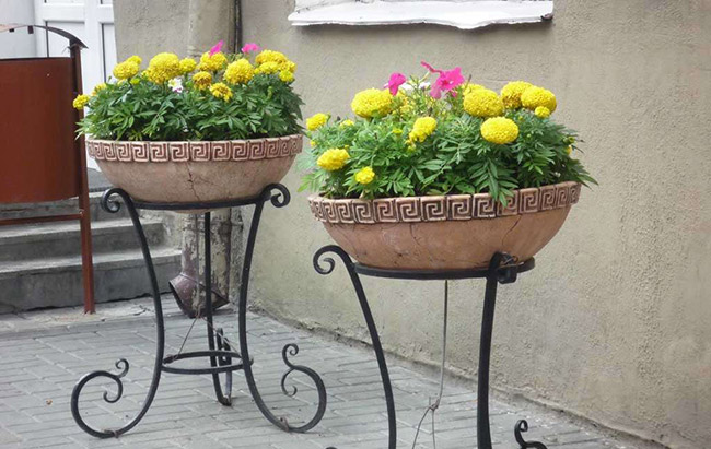 цветочные вазоны