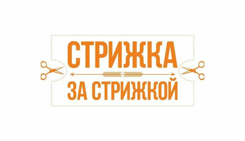 Strizhka-za-stizhkoj-_logotip.jpg