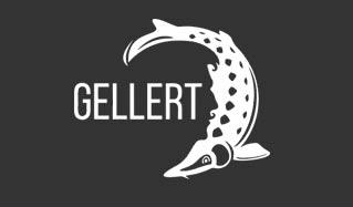 Gellert-beer_logo.jpg
